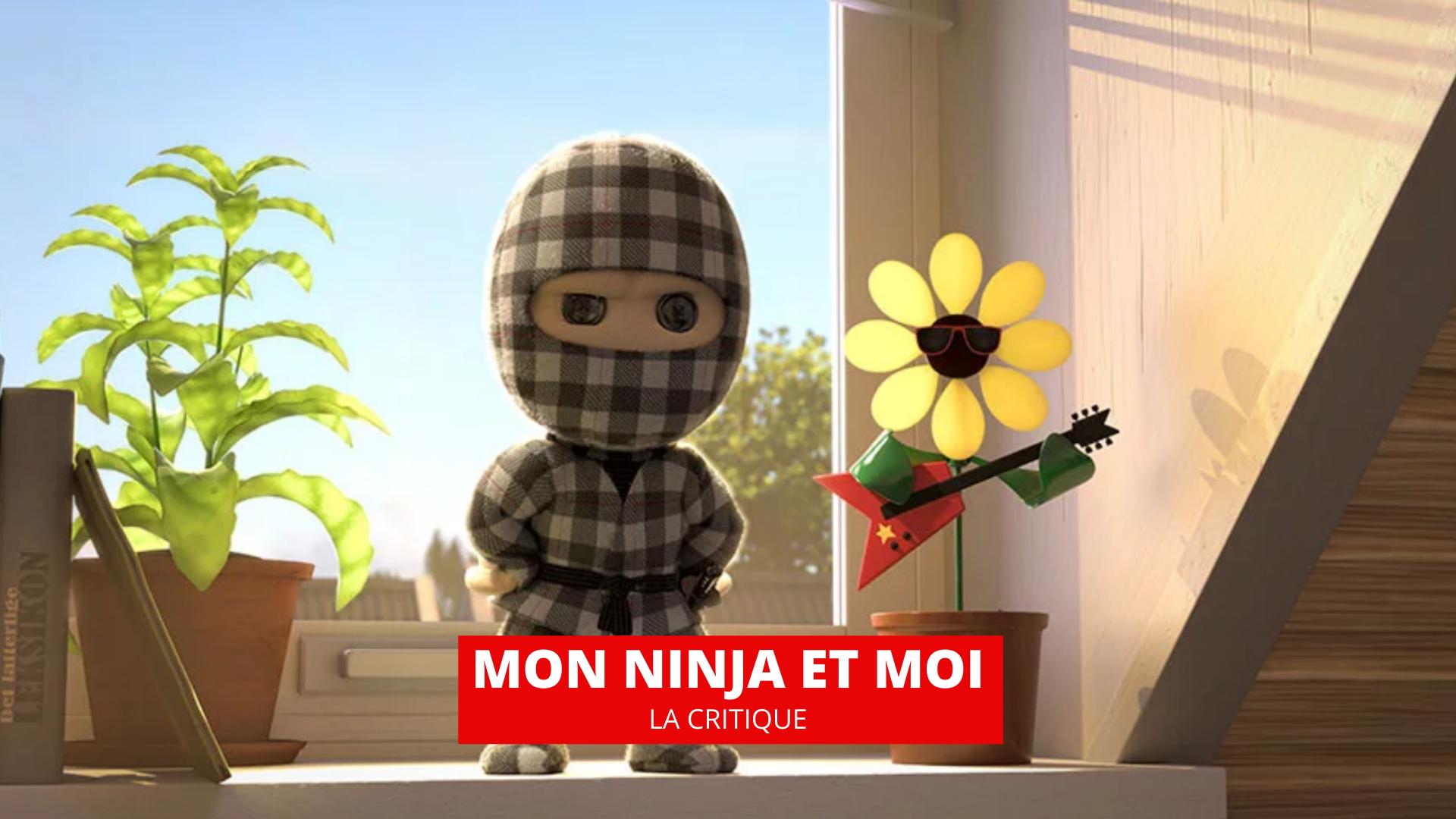 Critique de Mon ninja et moi (Film, 2020) - CinéSéries
