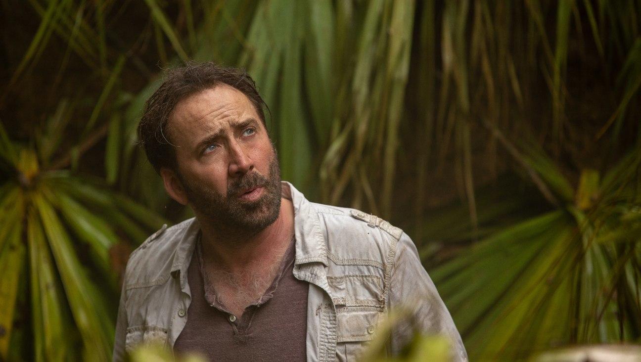 Joe Exotic : la série avec Nicolas Cage est pour Amazon