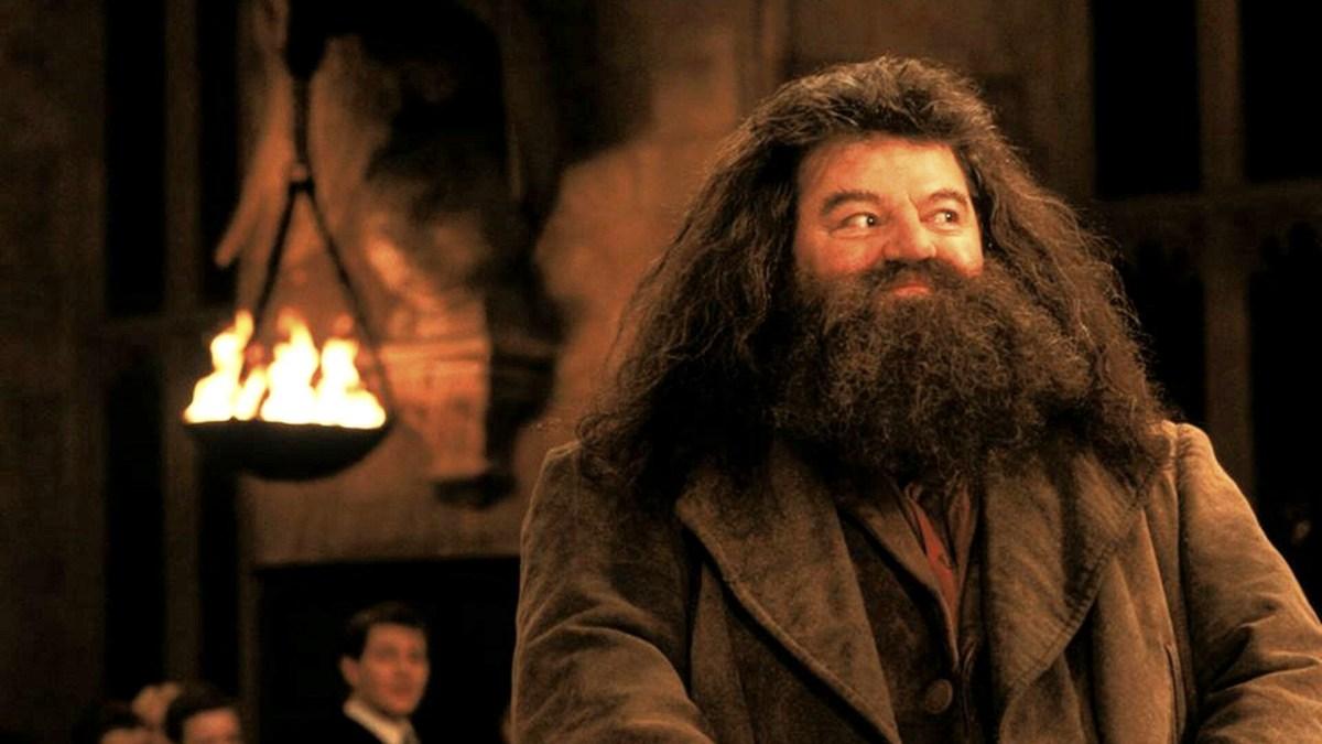 Hagrid (Robbie Coltrane) - Harry Potter à l'école de sorciers